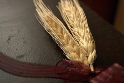 Wheat_MG_9822