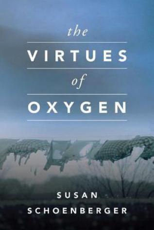 virtues of oxygen by susan schoenberger