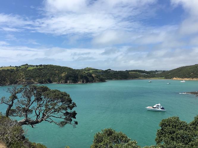 NZ Waiheke Owhanake 3
