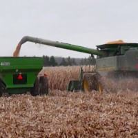 An Ontario Harvest Weather Outlook for 2014 — It Could Be Worse