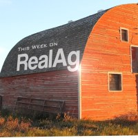 This Week on Real Ag — Bulls, Bears and Giants — Oct 30, 2014
