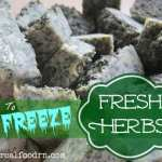 How To Freeze Fresh Herbs 150x150 Using SCOBYs to balance garden pH