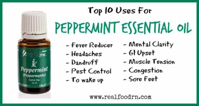 Top 10 Uses For Peppermint Essential Oil