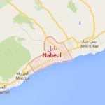 Nabeul : Une arme et des munitions découvertes dans la maison d'une jeune femme