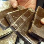 Gabes: Saisie de 200 kg de haschich «Takrouri» et arrestation des dealers