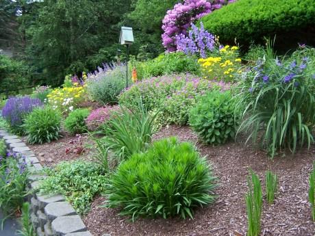 my perennial garden