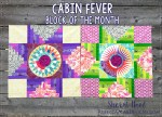 Cabin Fever Block of the Month Quilt #2