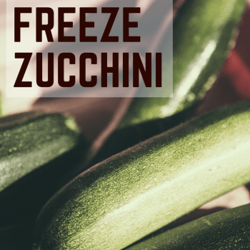 Having an abundance of zucchini can be wonderful!  Learn how to freeze zucchini so you can use it all year long.