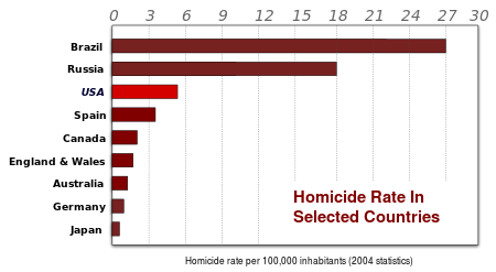 Homicide rate per country