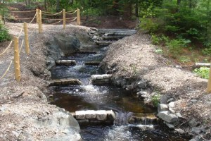 A series of weir dams on Blackman Stream, Maine. These are thick, rectangular weirs.