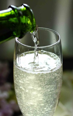"""The Gin Gin 75"": champagne cocktail with gin and ginger"