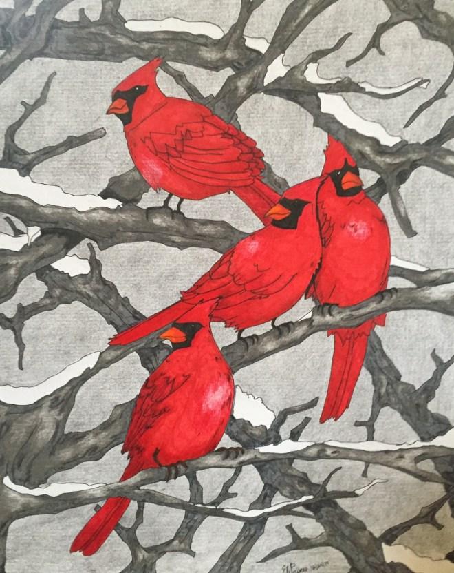 FullSizeRender Cardinal