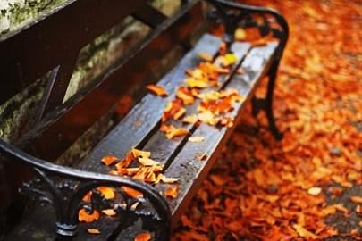 thanksgiving bench