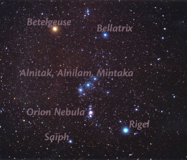 orion labeled