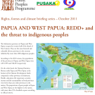 PAPUA AND WEST PAPUA: REDD+ and the threat to indigenous peoples