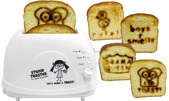 Stupid Toaster lives up to its name