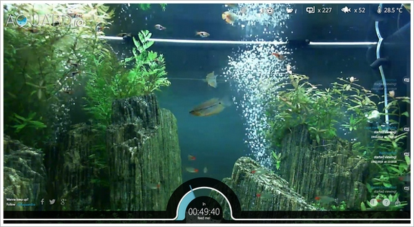 aquardio Aquardio   Bored? Then feed some real fish with your browser and mouse button