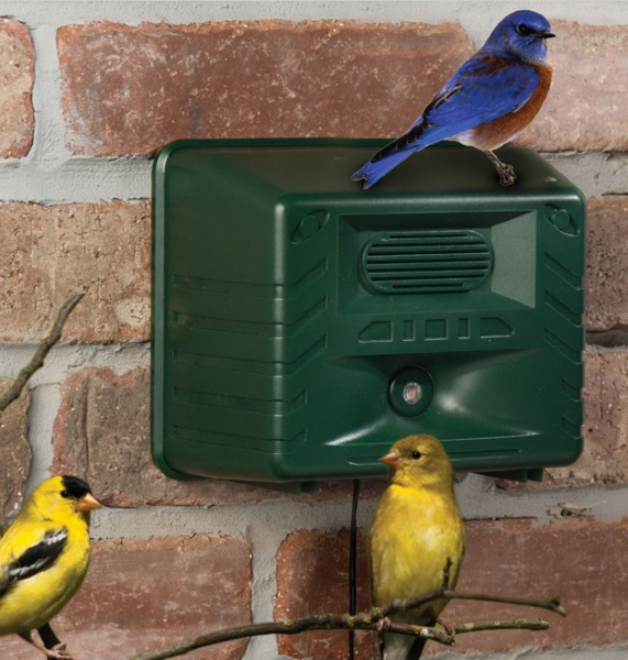 Ornithologist's Song Bird Attractor – this box brings all the birds to the yard