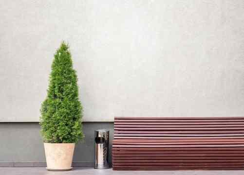 Plants hiding trash