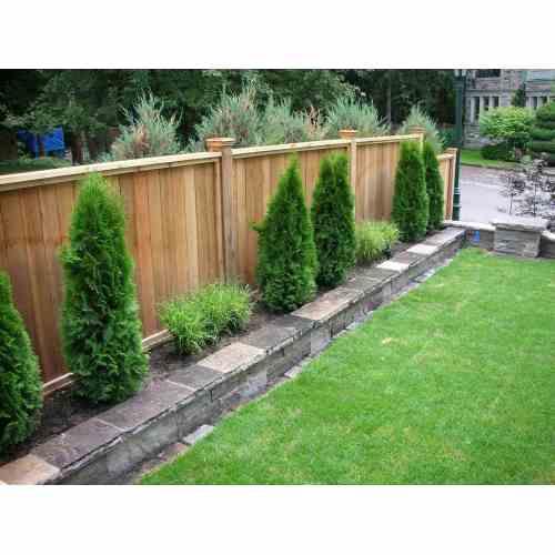 Medium Crop Of Backyard Accessories Fencing