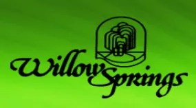 Roswell GA Neighborhood Willow Springs