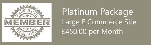 SEO Cardiff - Platinum package