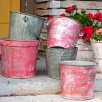 Michigan Pine Traverse City Cherry Buckets 2