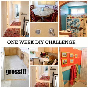 One Week Home DIY Challenge