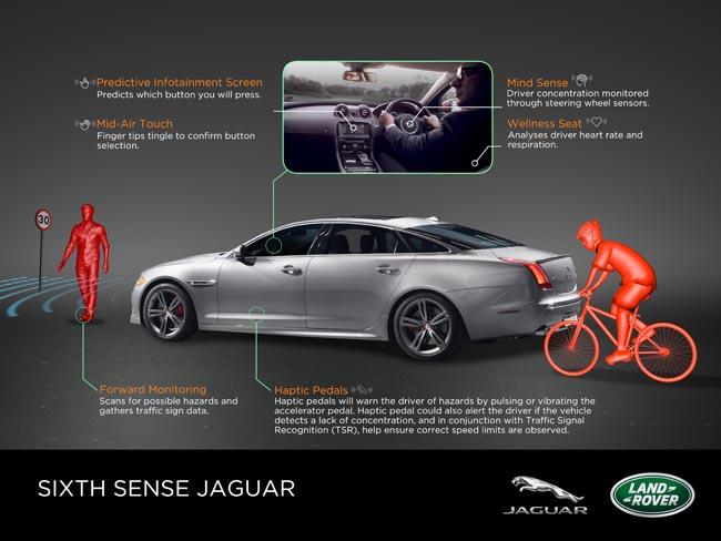jaguar-mind-sense
