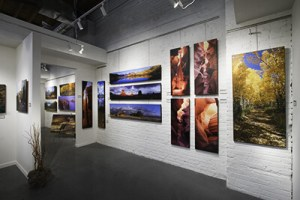 Gallery Mounting for Professionals