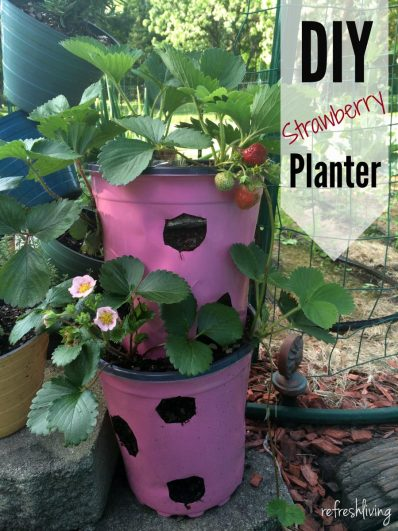 diy strawberry planter pot with self watering