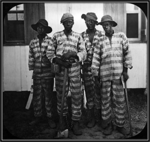 Convicts leased to harvest timber circa 1915