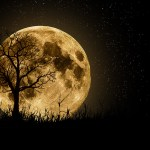 Things to do this Full Moon