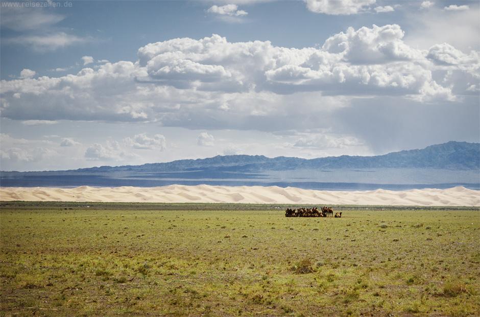 Mongolei_Wüste Gobi
