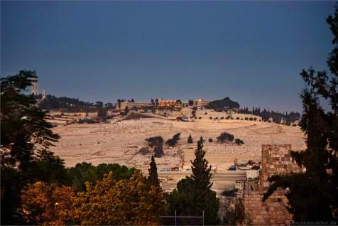 Blick von der Altstadt Jerusalem auf dem Ölberg_Israel