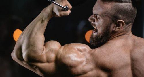 steroids-e1510754583916