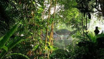 Pura Gunung Lebah Ubud