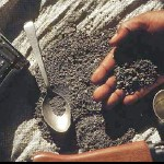 La dependencia de la CVG realiza exploraciones en el oeste de Bolívar, donde también han encontrado otros recursos minerales.