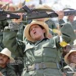 Vía habilitante, se reformó la Ley Orgánica de la Fuerza Armada Bolivariana para fortalecer la milicia.