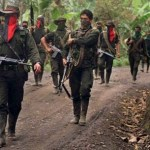 En la localidad de El Nula, estado de Apure, en el límite con Colombia, los pobladores denuncian las incursiones criminales de miembros del grupo terrorista ELN en la zona.
