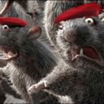CORRUPCIÓN, Los roedores
