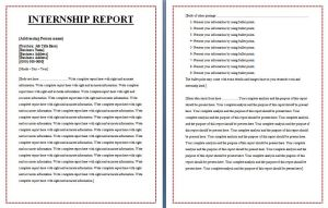 Internship Report Template
