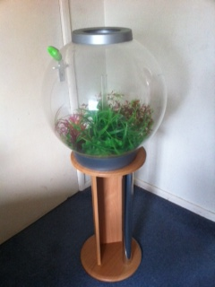 SE England biorb 60 litre fish tank with stand and accessories