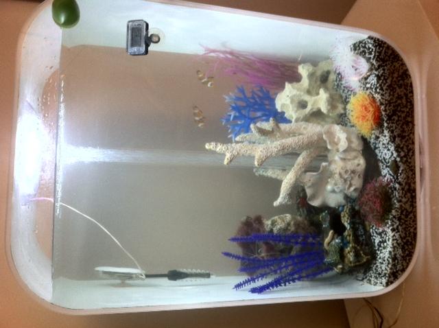 BiOrb Life 60 liter white fish tank / aquarium incl. intelligent