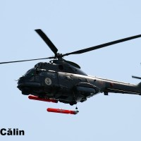 Puma Naval: lansare a unei torpile de exercitiu