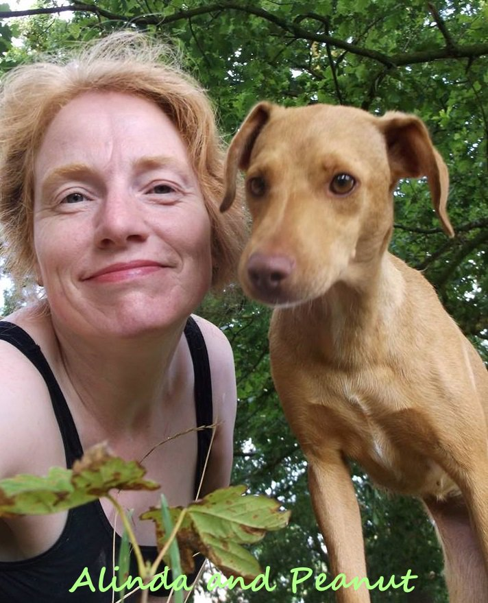Adopted! Spicy's sponsored shelter dogs Peanut and Buttercup find a new family
