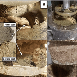A 1 the Compacted Conditioned Soil After Test Inside Chamber Due