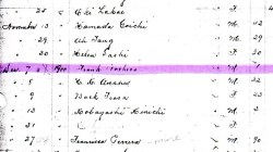 Example Kauai Death Register 1900