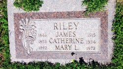 My genealogy search for Mary (Riley) Jackson was the end of a line