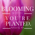 blooming where you're planted
